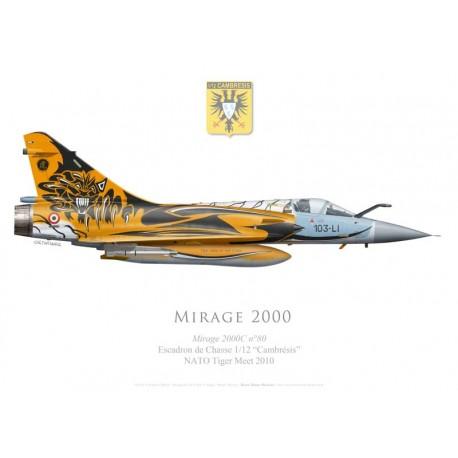 """Mirage 2000C No 80, EC 1/12 """"Cambrésis"""", Tiger Meet 2010, BA 103 Cambrai-Epinoy"""