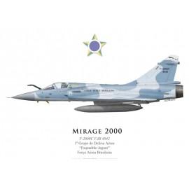 """F-2000C, 1º Grupo de Defesa Aérea """"Esquadrão Jaguar"""", Força Aérea Brasileira"""