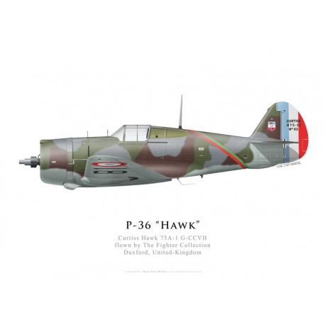 Curtiss Hawk 75A-1, G-CCVH, The Fighter Collection, Duxford