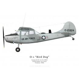 Cessna O-1G, US Air Force, Vietnam, années 1960