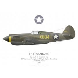 P-40-CU Warhawk, AAF Advanced Flying School, Single-Engine (Transition), Luke Field, 1943