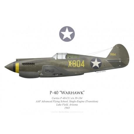 Curtiss P-40-CU Warhawk 39-184, AAF Advanced Flying School, Single-Engine (Transition), Luke Field, 1943