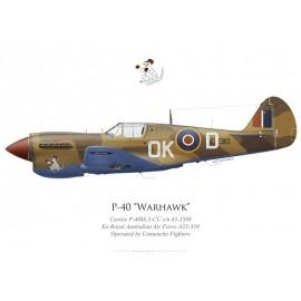 P-40M Warhawk, NX40DF, Comanche Fighters