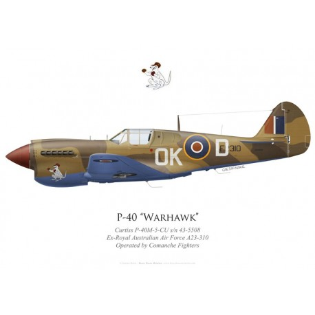 Curtiss P-40M Warhawk, NX40DF, Comanche Fighters