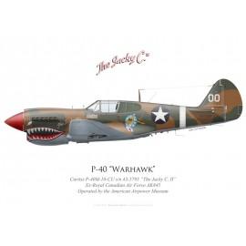 "P-40M ""The Jacky C II"", NX123N, American Airpower Museum"