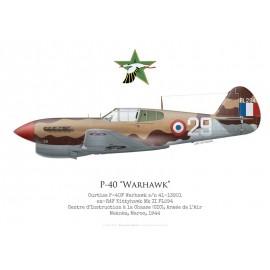 P-40F, Armée de l'Air, CIC Meknès, Maroc, 1944