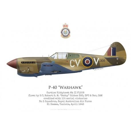 "Curtiss Kittyhawk Mk II, S/L ""Bobby"" Gibbes, No 3 Squadron RAAF, Tunisie, 1943"