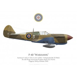 P-40L / Kittyhawk Mk II, No 239 Wing Training Flight, Italy, 1943