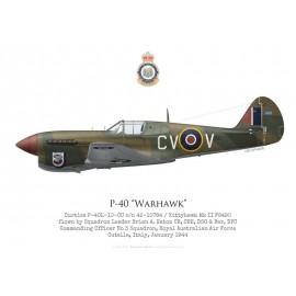 P-40F / Kittyhawk Mk II, S/L Brian Eaton, commandant du No 3 Squadron RAAF, Italie, 1943