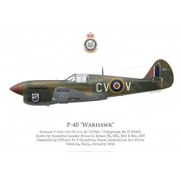 Curtiss P-40F / Kittyhawk Mk II FS490, S/L Brian Eaton, CO No 3 Squadron RAAF, Italy, 1943