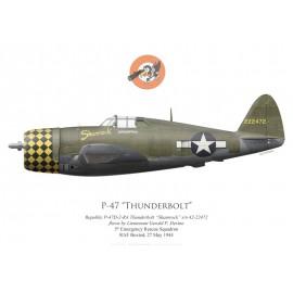 "P-47D Thunderbolt ""Shamrock"", Lt Gerald Devine, 5th Emergency Rescue Squadron, 1944"