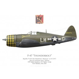 "P-47D Thunderbolt ""Shamrock"", Lt John Sullivan, 350th Fighter Squadron, 353rd Fighter Squadron, 1943"