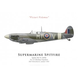Spitfire Mk Vb, No 122 Squadron, RAF Hornchurch, summer 1943