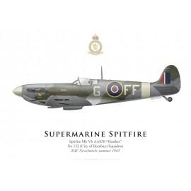"Spitfire Mk Vb ""Heather"", No 132 Squadron, RAF Newchurch, summer 1943"