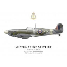 Supermarine Spitfire Mk Vb BM648, No 132 Squadron, RAF Newchurch, summer 1943