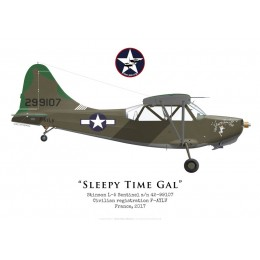 "Stinson L-5 Sentinel 42-99107, ""Sleepy Time Gal"", F-AYLV, 2017"