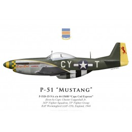 """P-51D Mustang """"Cape Cod Express"""", Capt. Chester Coggeshall Jr., 343rd Fighter Squadron, 55th Fighter Group, 1944"""