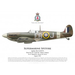 Spitfire Mk Vb, S/L Lionel Gaunce, No 41 Squadron, Royal Air Force, août 1941