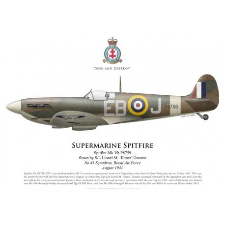 Spitfire Mk Vb, S/L Lionel Gaunce, No 41 Squadron, Royal Air Force, August 1941