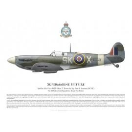 Spitfire Mk Vb AB921, Sgt Ben Scaman, No 165 (Ceylon) Squadron, Royal Air Force, mai 1943