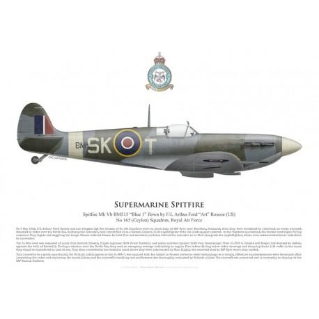 Supermarine Spitfire Mk Vb BM515, F/L Arthur Roscoe, No 165 (Ceylon) Squadron, Royal Air Force, May 1943