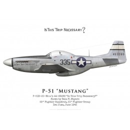"""North American P-51D Mustang 44-63289 """"Is This Trip Necessary?"""", 53rd Fighter Squadron, 21st Fighter Group, 1945"""