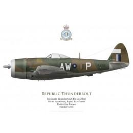 Republic Thunderbolt Mk II KJ302, No 42 Squadron RAF, Meiktila, Birmanie, 1945