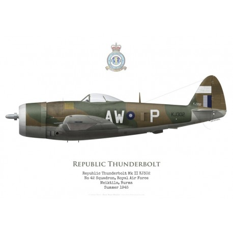 Republic Thunderbolt Mk II KJ302, No 42 Squadron RAF, Meiktila, Burma, 1945