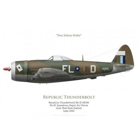 Republic Thunderbolt Mk II HD185, No 81 Squadron RAF, Java, 1945