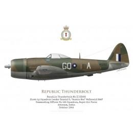 Republic Thunderbolt Mk II HD282, S/L McDonald, commandant du No 134 Squadron RAF, Inde, 1944