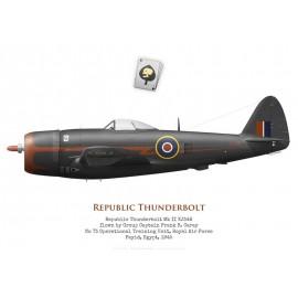 Thunderbolt Mk II, G/C Frank Carey, No 73 OTU, Egypt, 1945