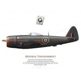 Republic Thunderbolt Mk II KJ348, G/C Frank Carey, No 73 OTU, Egypte, 1945