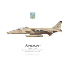 """Jaguar A, Escadron de Chasse 1/11 """"Roussillon"""", Opération Daguet, Irak, 1991"""