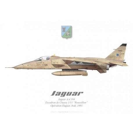 """Jaguar A, Escadron de Chasse 1/11 """"Roussillon"""", Opération Daguet, Irak, 1991, French Air Force"""