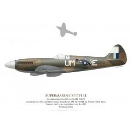 Supermarine Spitfire PR.XIX, PS890, F-AZJS, France, 2020