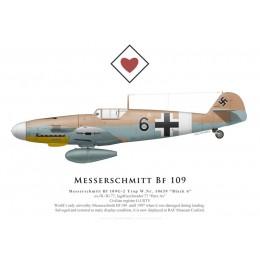 """Messerschmitt Bf 109G-2 Trop, """"Black 6"""", G-USTV, RAF Museum Cosford"""