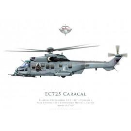 """EC725 Caracal, Escadron d'Hélicoptères EH 01.067 """"Pyrenées"""", BA 120 Cazaux"""