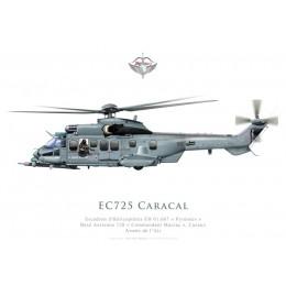 """Eurocopter EC725 Caracal, Escadron d'Hélicoptères EH 01.067 """"Pyrenées"""", BA 120 Cazaux"""