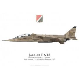 """Jaguar E, Escadron de Chasse 2/7 """"Argonne"""", Base Aérienne 113 Saint-Dizier-Robinson, 1992"""