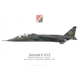 """Jaguar E, Escadron de Chasse 2/7 """"Argonne"""", Base Aérienne 113 Saint-Dizier-Robinson, 1993"""