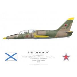 L-39C Albatros, 444 TsBP i PLS, Ostrov Air Base, Aéronavale russe, 2005