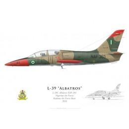 L-39C Albatros, Armée de l'air nigériane, Kaduna, 2010