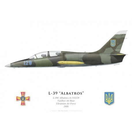 L-39C Albatros, Vasilkov Air Base, Ukrainian Air Force, 2008