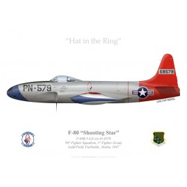 F-80B Shooting Star, 94th Fighter Squadron, Ladd Field, Alaska, 1947