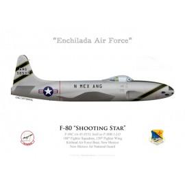 F-80C Shooting Star, 188th FS, 150th FW, Kirtland AFB, New Mexico ANG