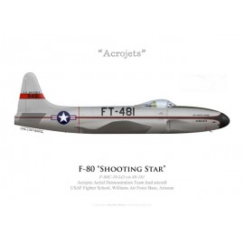 """F-80C Shooting Star, Patrouille """"Acrojets"""", USAF Fighter School, Williams AFB, Arizona"""