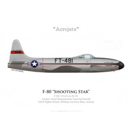 F-80C Shooting Star, Acrojets Aerial Demonstration Team, USAF Fighter School, Williams AFB, Arizona