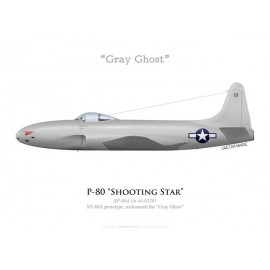 "Lockheed XP-80A Shooting Star prototype ""Gray Ghost"""