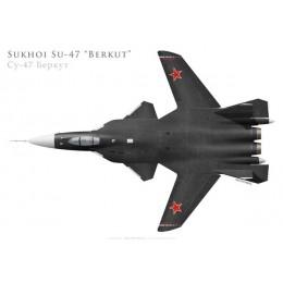 Prototype du Sukhoi Su-47 Berkut