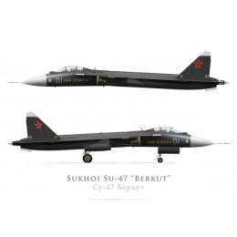 Sukhoi Su-47 Berkut prototype